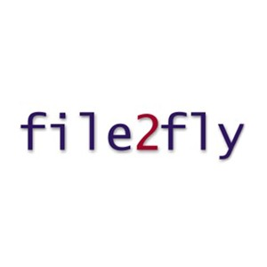 File 2 Fly Logo
